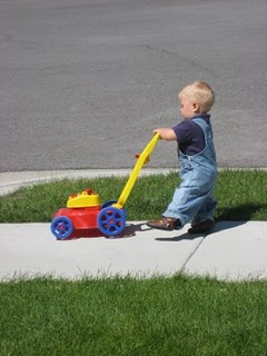 mowing-the-sidewalk.JPG