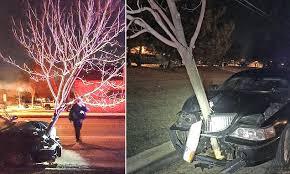 DUI-tree-hood-ornament