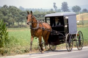 Pennsylvania, Lancaster County, Amish Horse And Buggy. (Photo by Education Images/UIG via Getty Images)